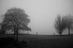Sunday morning blues (maekke) Tags: zürich seefeld tiefenbrunnen zürichsee fog morning sunday silhou streetphotography fujifilm x100t bw noiretblanc minimalism 2017 ch switzerland 35mm