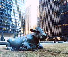Moo (mrsparr (365 project disaster with 82 days to go)) Tags: ctt sculpturestatue crazytuesdaytheme 7dwf toronto ontario canada downtown sculpture cow outdoor buildings joefafard activeassignmentweekly forcedperspective 52in2018