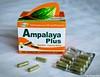 Ampalaya Plus 4 (The Hungry Kat) Tags: ampalayaplus ampalaya health benefits diabetes lifestyle supplement herbal capsule