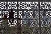 Kuala Lumpur - Masjib Negara (luco*) Tags: malaisie kuala lumpur mosquée nationale national mosque masjib silhouette homme man contrejour édifices buidlings travailleur worker negara malaysia flickraward flickraward5