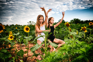 Twins in a Sunflower Patch