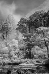 Temple, landscape. Kyoto, Japan (Matt OZW) Tags: