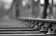 Gare au déraillement ! :-) (Thierry.Vaye) Tags: éclisse rail tirefonds traverse bois bokeh nb monochrome po pont chemindefer ferrée voie