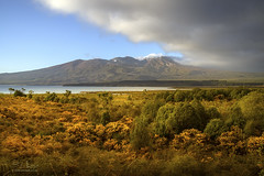 New Zealand (Ed Kruger) Tags: allrightsreserved aotearoa edkruger millakruger nz newzealand northisland rodionkruger tongariro abaconda blue clouds copyrights forest green horse kirillkruger kiwi morning mountain park plants qfse rodkruger sky snow sun sunrise sunset travel travelphotography tree winter yellow