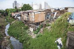 _SSB4616 (Edson Grandisoli. Natureza e mais...) Tags: regiãosudeste palafita córrego urbano favela carente rio água lixo poluição esgoto casa moradia
