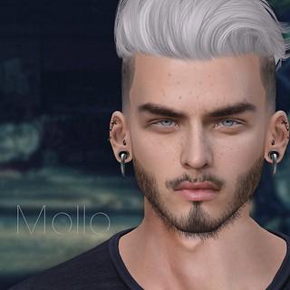 SIMIO // Mollo Shape