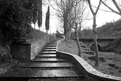 100_4921 by Francesco Luppolo -