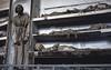 Catacombe dei Cappuccini, Palermo (jacqueline.poggi) Tags: catacombedeicappuccini catacombesdescapucins italia italie italy mummia palerme palermo sicile sicilia sicily momie mummy
