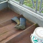 123 -- Dunlop hevea Wellies from a farm-- Bottes Hevea Dunlop d'une ferme --  Gummistiefel auf dem Bauernhof -- Rubber laarzen uit een boerderij thumbnail