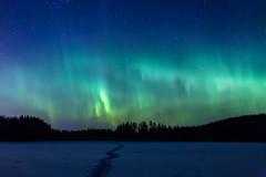 IMG_0261 (Marko Pennanen) Tags: aurora auroraborealis huhtilampi joensuu night nightphotography nightsky northernlights revontuli tohmajärvi valkeasuo yö yötaivas