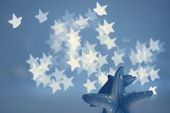 Stars on star _ a shot for MM (pierfrancescacasadio) Tags: aereo marzo2018 26032018840a5786 mm macromondays blue blu macro 50mm bokeh stars theblues stellamarina delfino