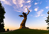 The Motherland Calls (gubanov77) Tags: themotherland volgograd mamayevkurgan russia architecture monument museum sculptures tourism travel travelphotography