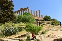 Tempio di Giunone (Hera Lacinia) Valle dei Templi, Agrigento, Sicily, April 2018 104 (tango-) Tags: sicilia sizilien sicilie italia italien italie
