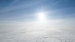 Crossing the plain (Tommy Høyland) Tags: dogs finmark landscape winter endless crossing plain space horizen cold dogsled sun white norvegen snow lonely bright north open light noruega norway desolated wide ice crossingtheplain xt2 10mm fujifilm fuji