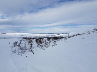Still lot of snow at the Varanger moor
