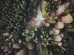 Break new soil (desomnis) Tags: drone landscape nature droneshot dronephotography woods trees path road dirtroad spring desomnis