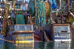 Hello........? (Paul Rioux) Tags: arcticocean commercial fish boat vessel frenchcreek parksville bc sealion nets colour rust calm water reflection prioux trawler