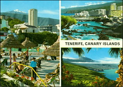 0111 R Canary islands Tenerife Published by John Hinde Limited sent 8.X.1984 Braco (Morton1905) Tags: 0111 r canary islands tenerife published by john hinde limited sent 8x1984 braco