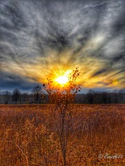 Fire and sky! (Edale614) Tags: sunset sunsetsaroundtheworld highbanks metropark cbus cbusmetroparks 614 nature naturelovers columbus ohio colorful hdr landscapephotography lakescape earl614