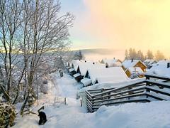 My village, and its still snowing (evakongshavn) Tags: snow village winter winterwonderland winterlandscape wonderlandscape wonderland wonderfulworld new lightopia light white myview streetview norge norway 7dwf
