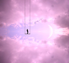 """(""""What's in the box?!"""") Tags: sunset sunsets landscape landscapes moon sun birds silhouette swing digitalart fineart potd photographer photography art surreal surrealism abstract photoshop canon dslr digital portrait man clouds cloud nature"""