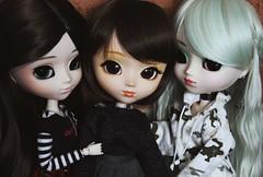 (hauntiing) Tags: pullip pullips ddalgi nina prunella doll dolls toy toys
