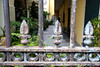 New Orleans Courtyard (photographyguy) Tags: gate neworleans louisiana frenchquarter courtyard ferns plants fence vieuxcarré rust fleurdelis patio southern security