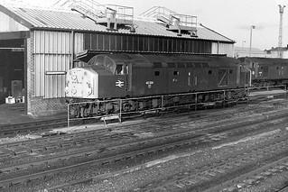 40024 (Lucania) 1982