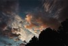 Better than Turner (Nobo Sprits) Tags: lucht clouds wolken bomen trees painting