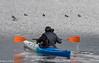 surrounded by ducks (Rourkeor) Tags: canoe paddles ducks loch lochwinnoch water ripples reflections scotland renfrewshire unitedkingdom gb olympus omd em1mk2 12100mmpro mft