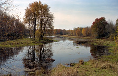 "Fall Landscape (""Photo Guy"") Tags: 35mmcolourfilm falllandscape kodakporta160 landscape minoltaxd11"