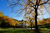 20180331-06-Autumn at railway roundabout fountain (Roger T Wong) Tags: 2018 australia hobart rogertwong sel1635z sony1635 sonya7ii sonyalpha7ii sonyfe1635mmf4zaosscarlzeissvariotessart sonyilce7m2 tasmania