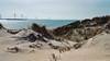Dünen (lotharmeyer) Tags: nordsee lotharmeyer landscape dünen neeltjejans gegenlicht sea beach westenschouwen wasser