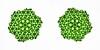 Tu-est 2C (Marjan Smeijsters) (De Rode Olifant) Tags: marjansmeijsters tessellation tuest2c origami paper paperfolding hexagon triangle test2 tessellationtest2 pattern