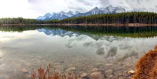 Herbert Lake -ICE(5)2312-16
