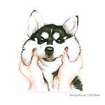 Print Patch POOR DOG, Großes Bügelbild zum aufbügeln thumbnail