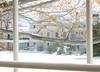 Through Hazy Glass (lclower19) Tags: house window greenhouse lymanestate waltham massachusetts tree limb leaves snow