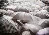... G is for Guardasolak ... (Lanpernas .) Tags: guardasolak umbrella paraguas lluvia rain euria manifa invierno 2018 pensiones pensionistas