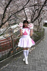 Paws To Notice New Spring (emotiroi auranaut) Tags: woman lady pretty cute lovely beauty beautiful adorable paws cat ears blossoms sakura spring season dress happy smile smiling nice japan japanese asia asian