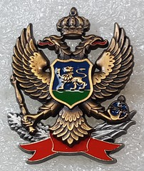Montenegro Army (Sin_15) Tags: montenegro badge insignia hat beret cap ground forces land military army armed force