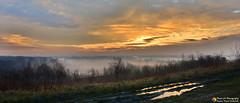 The morning misty sunrise (Szymon Simon Karkowski) Tags: outdoor morning misty sunrise grass water sun sky clouds bushes pile road highway a4 landscape silesia voivodeship zabrze makoszowy poland nikon d7100