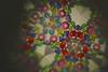 Kaleido (Octubres rotos) Tags: kaleido kaleidoscope art shape color colours rainbow abstract 50mm canon magic jewerly bead abalorio caleidoscopio diy handmade bokeh rgb hdr 1100d macro red multicolor arcoiris colorido