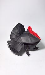 Turkey - designed by Katsuta Kyohei (Nguyễn Tuấn Tài) Tags: