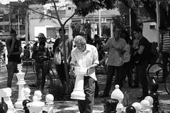 Movimiento calculado. (George.Photoculture) Tags: canon photography fotografia foto art canonphotography camera ajedrez chess game arte think thinking photographer picture photographers photo street style sociedad mexico guadalajara jalisco blackandwhite