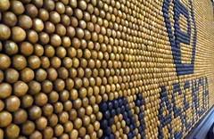 Cigares à gogo (LILI 296...) Tags: cigares honduras canonpowershotg7x tabac