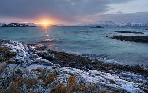 Sommarøy Adure