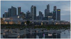 Waterfront (musicexpression) Tags: marina bay cbd waterfront lotus pond asm mbs singapore sg fujifilm xh1 eterna