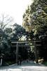 20180404 Yoyogi Park north gate (chromewaves) Tags: fujifilm xf xt20 1855mm f284 r lm ois tokyo japan harajuku yoyogi park meiji jingu shrine