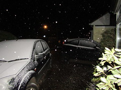 Snow is falling ... (wallygrom) Tags: england westsussex eastpreston mygarden mygarden2018 march2018 snow winter