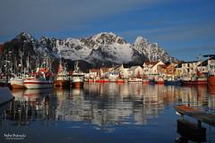 Barche da pesca ad Henningsvaer - Austvågøy (Fabio Bianchi 83) Tags: henningsvaer austvågøy lofoten norvegia norway norge nordland barche boats porto harbour sunset tramonto nord scandinavia